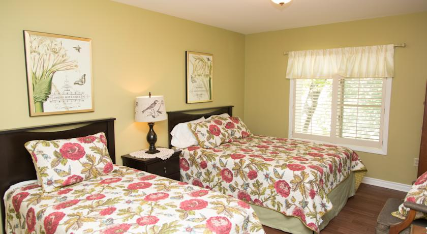 Lime Swallowtail Room